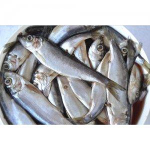 <p><strong>Салака&nbsp;соленая<br />Salaca sărată<br />Salted&nbsp;baltic herring</strong></p>