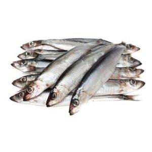 <p><strong>Салака мороженая<br />Salaca congelată<br />Frozen baltic herring</strong></p>